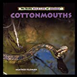 Cottonmouths