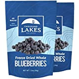 Thousand Lakes Freeze Dried Fruits and Vegetables - Blueberries 2-pack 1.2 ounces (2.4 ounces total) | No Sugar Added | 100%