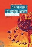 Professionelles Vertriebsmanagement: Der prozessorientierte Ansatz aus Anbieter- und Beschaffersicht