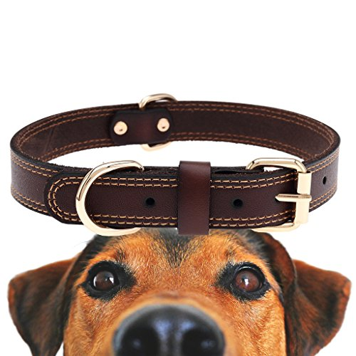 TREVANO Genuine Leather Dog Collar with Alloy Buckle and Double D Rings (Medium, Brown)