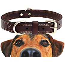 Genuine Leather Dog Collar With Alloy Buckle and Double D Rings (Medium, Brown)