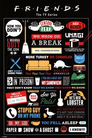 iPosters Friends TV Show Infographic Poster - 91.5 x 61cms (36 x 24 Inches) by (Small Poster Friend)