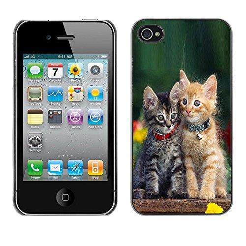 TopCaseStore / caoutchouc Hard Case Housse de protection la Peau - Cute Baby Kitten Cat Green Furry Pet - Apple iPhone 4 / 4S
