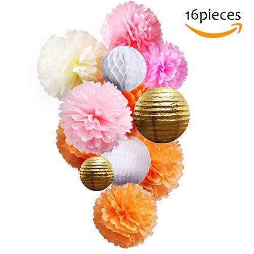 Tissue Paper Flower Pom Pom Kit-TP001(2017 New Design) Colorful,Pastel,Large Craft Paper for Custom Hanging Decoration,Gift,DIY Including 16 Pack Pom Pom,Paper Lantern,Honeycomb Ball(PINK style) (Simple Arts And Crafts For Halloween)