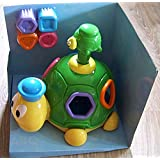 Little Learner Turtle Shape Suprise By Happy Kid Toy Group