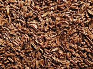 Caraway Seeds 5 Pounds Bulk