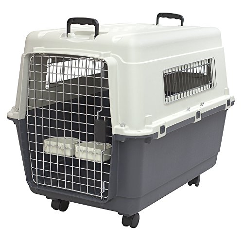 (SportPet Designs Plastic Kennels Rolling Plastic Wire Door Travel Dog Crate- Large Kennel)