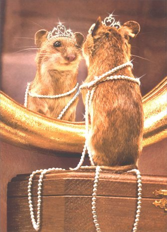 Mouse Looking in Mirror - Birthday Card