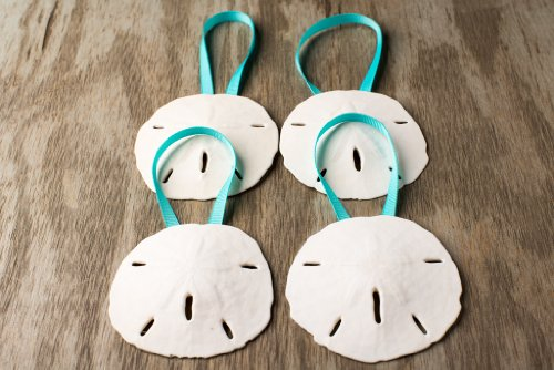 Sand Dollar Seashell Christmas Ornaments