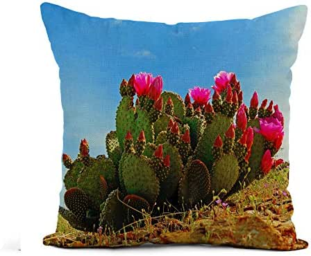Awowee Flax Throw Pillow Cover Red Bloom Prickly Pear Cactus Blooming Cacti Southwest Beautiful 20x20 Inches Pillowcase Home Decor Square Cotton Linen Pillow Case Cushion Cover