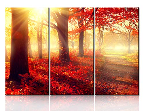 3 Pieces Wall Art Forest Modern Canvas Painting The Picture for Home Decoration Autumn Trees and Leaves Foggy Forest In Sunlight Rays Landscape Print On Canvas Giclee Artwork for Wall Decor(28''x42'')