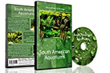 DVD Aquarium Combo Pack - Calming Scenes and Relaxing Music from Various Aquariums and Underwater Videos of Tropical Fishes, Corals and Sea Creatures