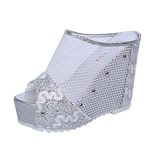 (◕‿◕Water◕‿◕ Women Wedge Sandals,Summer Fashion Flip Flops Hollow Wedge Shoes Mesh Party Sandals Fish Mouth Ladies Sandals Silver)