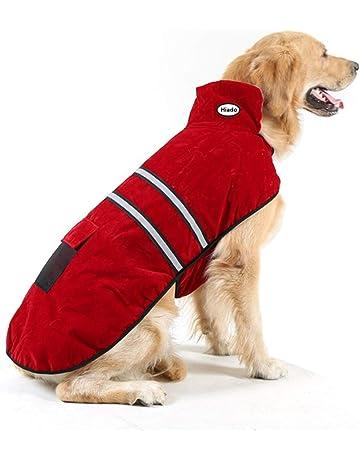 Dog Dresses Amazon Com