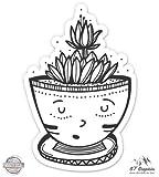 "Cute Cactus in Planter Ariocarpus - 8"" Vinyl Sticker - For Car Laptop I-Pad - Waterproof Decal"