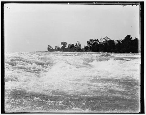 Photo: Rapids,American Falls,water bodies,trees,waves,Niagara River,New - In Falls Shopping York New Niagara