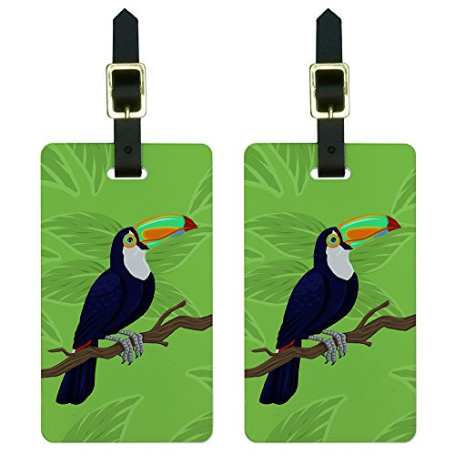 Toucan Tropical Luggage Suitcase Carry