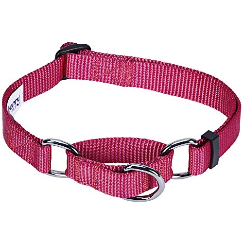 Blueberry Pet 19 Colors Safety Training Martingale Dog Collar, Very Berry, Medium, Heavy Duty Nylon Adjustable Collars for Dogs