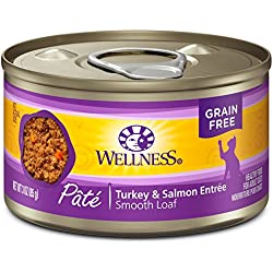 Wellness Natural Grain Free Wet Canned Cat Food, Turkey & Salmon Pate, 3-Ounce Can (Pack of 24)