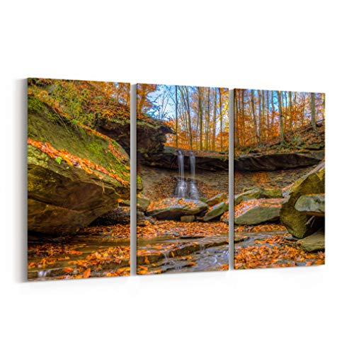 Blue Hen Falls Canvas Print Blue Hen Falls Canvas Art Blue Hen Falls Wall Art Canvas Multiple Sizes Gallery Wrapped Canvas on Pine Wooden Frame