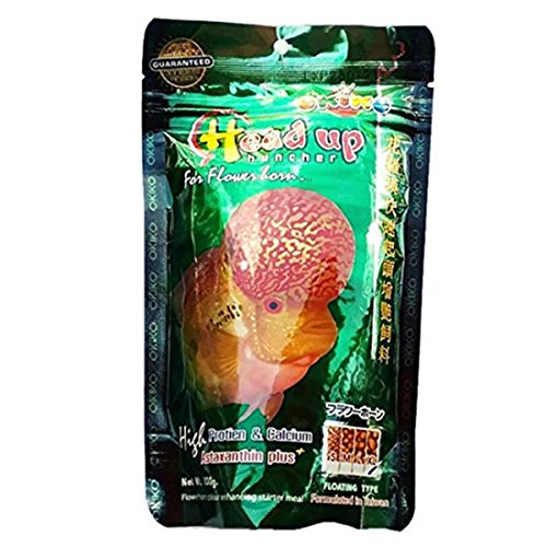 OKIKO Flowerhorn Fish Food Headup Huncher High Protein & Calcium with  Astaxanthin Plus XL Floating Pellets pellets 3 5 oz 100g