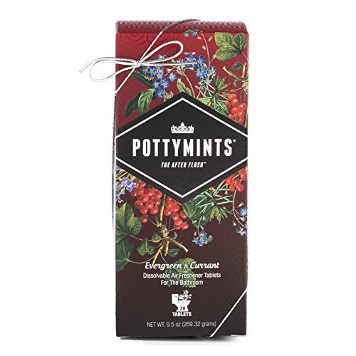 PottyMints Evergreen & Currant Travel Bathroom Toilet Odor Eliminator Air Freshener Tablet Box of 28 ()