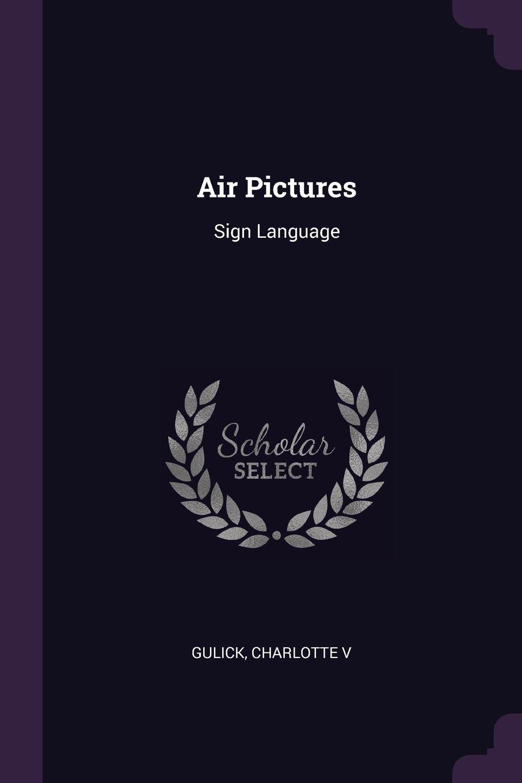 Air Pictures: Sign Language pdf