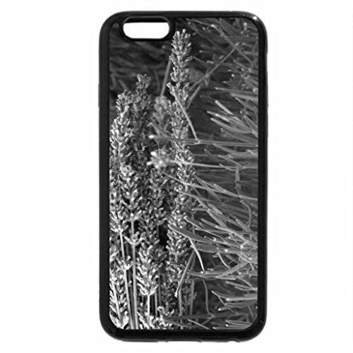 iPhone 6S Plus Case, iPhone 6 Plus Case (Black & White) - Fresh Lavender
