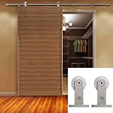 Hahaemall Classic Stainless Steel Interior Double Sliding Barn Door Hardware Track Roller Wood Door Kit Heavy Bearing 10FT/ 3m