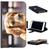 Hairyworm - BG0198 Golden retriever puppy Acer Liquid Z220 leather side flip wallet cell phone case, cell phone cover with card slots, money slot, stand point and magnetic clasp to close. Acer Liquid Z220 case