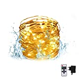 LED String Lights, Christmas Decorative Light String with Remote Control for Indoors & Outdoors, Waterproof, 100 Super Bright LEDs & 33 feet Copper Wire, Warm White (33 feet A)