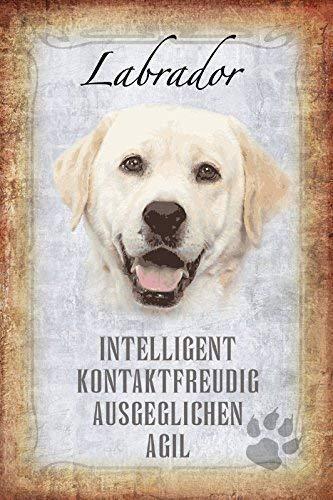 Labrador Perro Dog Placa de Metal Cartel de Lata 20 X 30CM ...