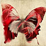 Startonight Canvas Wall Art Red Butterfly, Butterfly USA Design for Home Decor, Dual View Surprise Artwork Modern Framed Ready to Hang Wall Art 31.5 X 31.5 Inch 100% Original Art Painting!