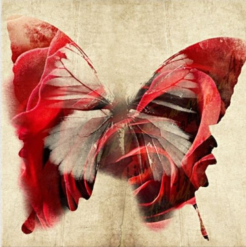 Startonight Canvas Wall Art Red Butterfly, Butterfly USA Design for Home Decor, Dual View Surprise Artwork Modern Framed Ready to Hang Wall Art 31.5 X 31.5 Inch 100% Original Art (Halloween Decor Hobby Lobby)