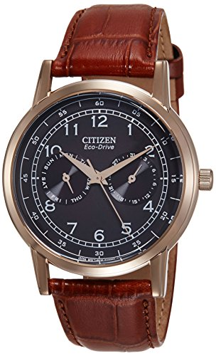 08e Watch - Citizen Analog Black Dial Unisex Watch - AO9003-08E