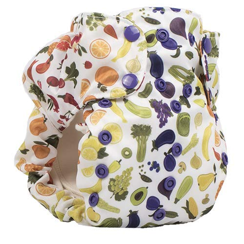 Smart Bottoms Smart 3.1 OS Organic All-in-one Cloth Diaper (Rocket)