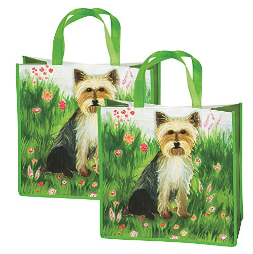 Reusable Shopping Bags - Set of 2 Eco-Friendly Tote Bags, ()