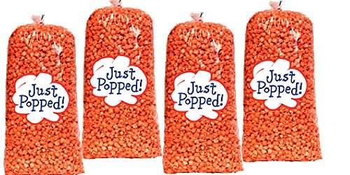Hot Cheese Popcorn - 4-Pack Hot and Spicy Cheddar Popcorn (72 Cups Per Case)
