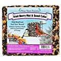 Pack of 8 Pine Tree Fruit, Berry, Nut, Seed Cakes, 2 lbs. each