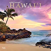 Hawaii 2020 12 x 12 Inch Monthly Square Wall Calendar with Foil Stamped Cover, USA United States of America Noncontiguous State Nature (English, Spanish and French Edition)