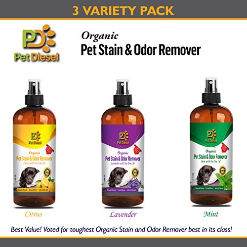 Pet Diesel Organic Pet Stain and Odor Remover & Enzyme Cleaner Spray – Dog or Cat Odor Eliminator For Carpet – Best Organic Lavender, Citrus, and Mint w/Tea Tree Oil - 3 Variety Pack - 4 FL Oz - By