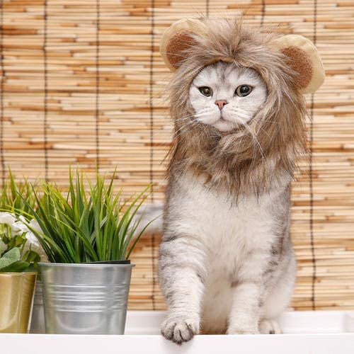 Namsan Pet Costume for Holiday Cat Halloween Hat Dog Christmas Outfit- Pet Sailor Outfit, Lion Hat, Christmas Hat 21