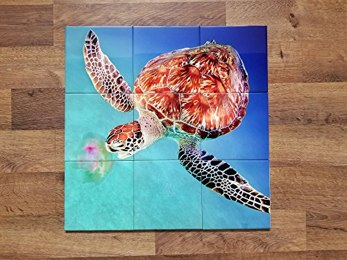 - iHave4Kings Sea Turtle Jellyfish Photo Ceramic Tile Mural 18