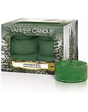 Yankee Candle Velas de Té Aromáticas, Neblina Incesante, Colección Alpine Christmas, 12Unidades