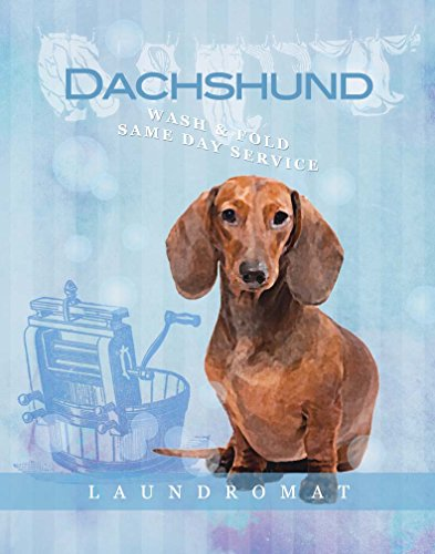 (Ideogram Designs Dog Poster Dachshund Laundry wash and fold Love Vintage Cute Dog Poster Saying 11x14 Art Retro)