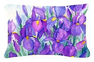 """Caroline tesoros del morado Iris Tejido decorativo almohada, 12""""X 16"""", multicolor"""