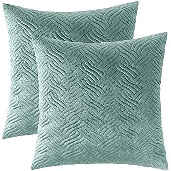 Brilliant Amazon Com Silver Fern Decor 16 X 16 Seafoam Green Throw Ibusinesslaw Wood Chair Design Ideas Ibusinesslaworg