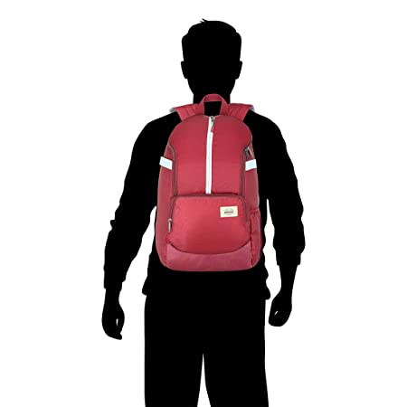 American Tourister Copa 22 Ltrs Red Casual Backpack (FU9 (0) 00 002)