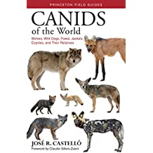Canids of the World: Wolves, Wild Dogs, Foxes, Jackals, Coyotes, and Their Relatives (Princeton Field Guides Book 116)