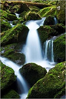 Book Moss Covered Rocks in a Mountain Stream, For the Love of Nature: Blank 150 page lined journal for your thoughts, ideas, and inspiration